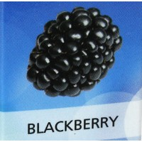 KIK E-CIGARETTE 11MG JUICE BLACKBERRY
