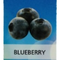 KIK E-CIGARETTE 6MG JUICE BLUEBERRY